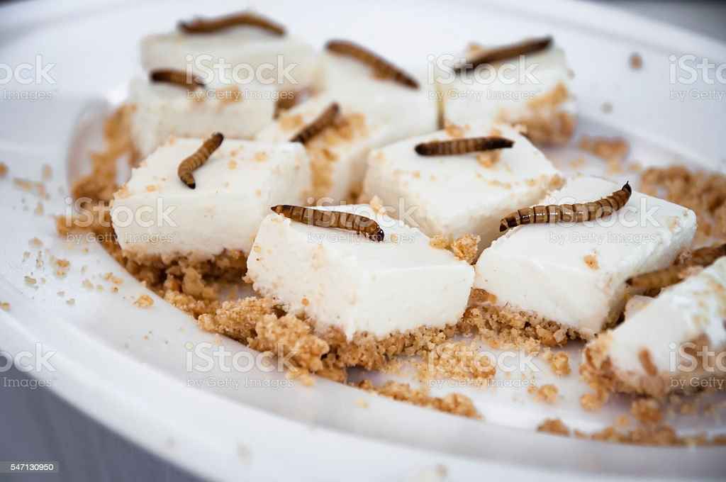 lemon cheesecake bites with roasted mealworms stock photo