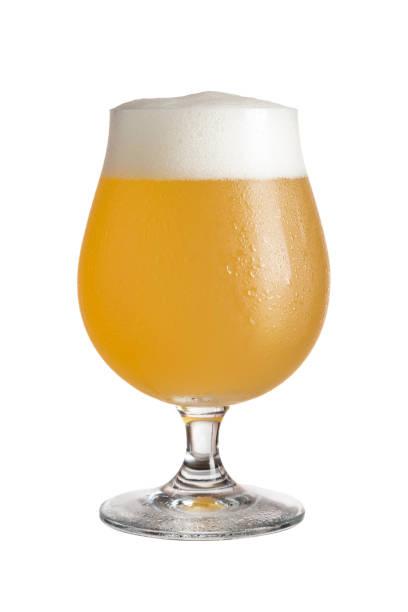 Lemon fruit beer stock photo