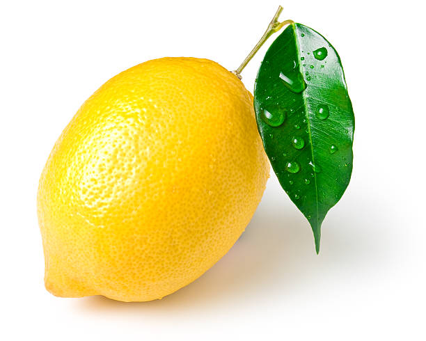 Lemon stock photo