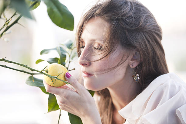 lemon - scented stock photos and pictures