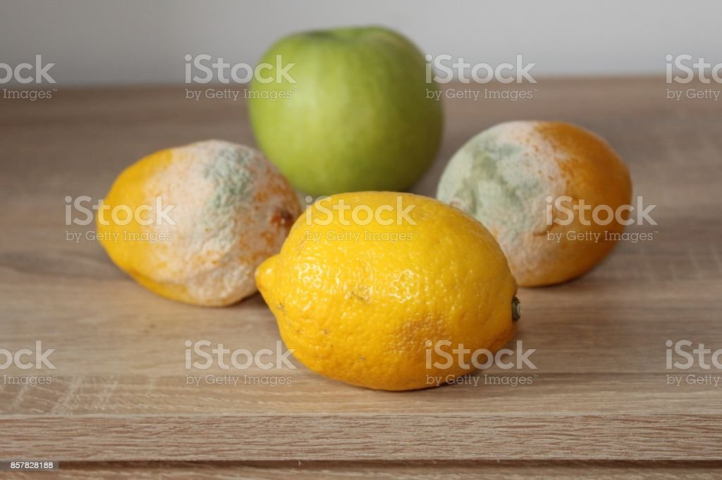 Lemon. stock photo