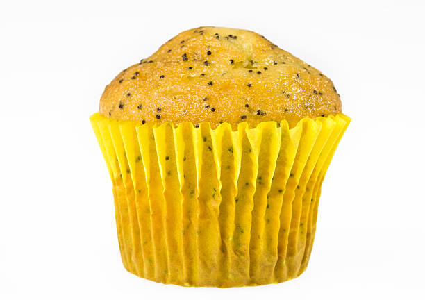 lemon poppy muffin stock photo