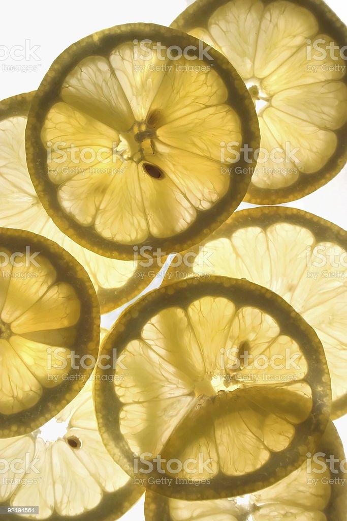 Lemon Sunshine royalty-free stock photo