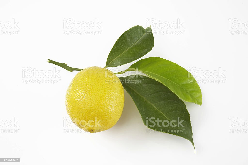 Lemon with leaves on white background royalty-free stock photo