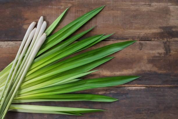 lemongrass and fresh pandan leaves on wooden floor. - pandan składnik zdjęcia i obrazy z banku zdjęć