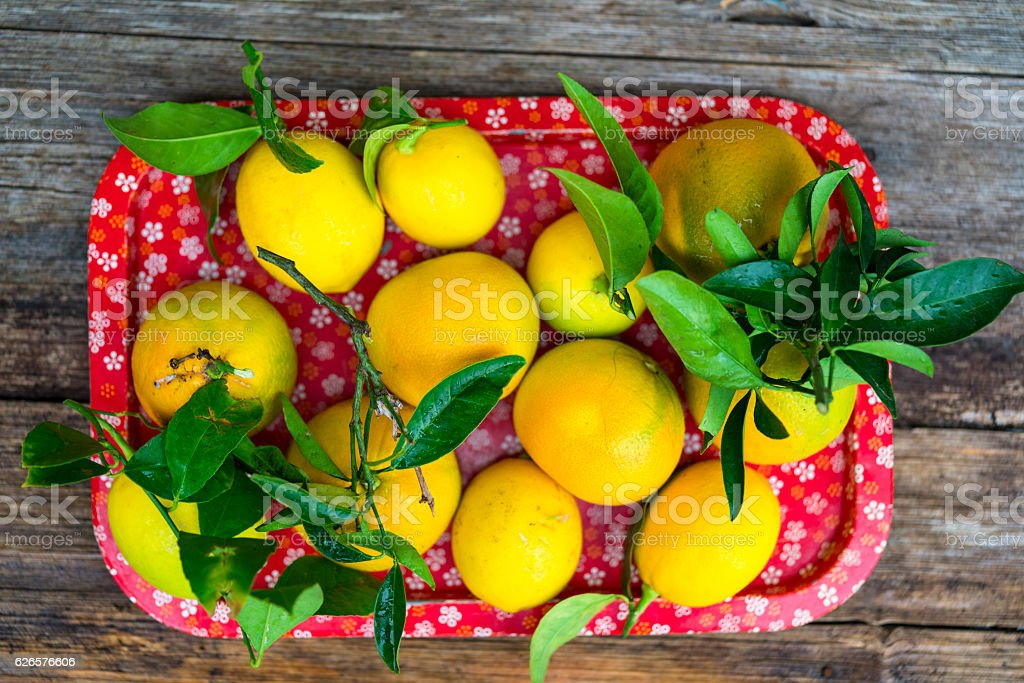 Horizontal composition of Lemons and Oranges with leafs in red...