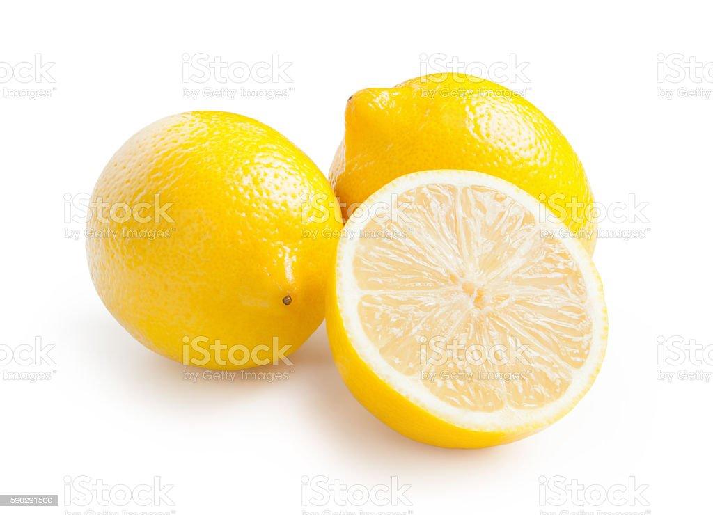 Lemons isolated on white background royaltyfri bildbanksbilder