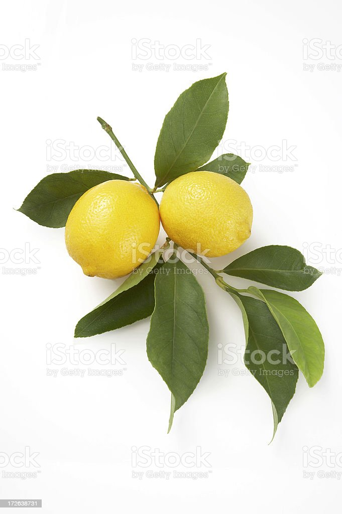 Lemons mit Blätter auf weißem Hintergrund Lizenzfreies stock-foto