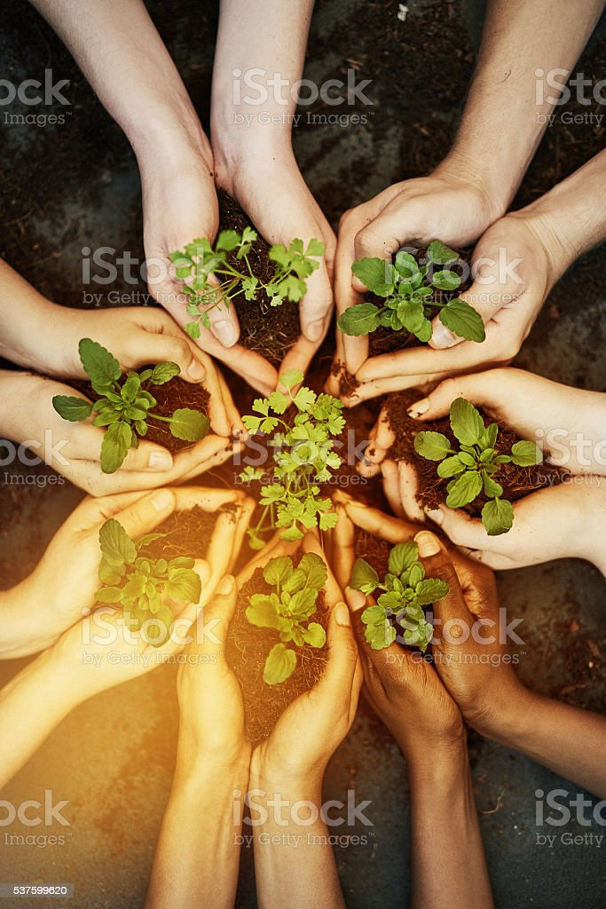 Lend a hand to save our greenery stock photo