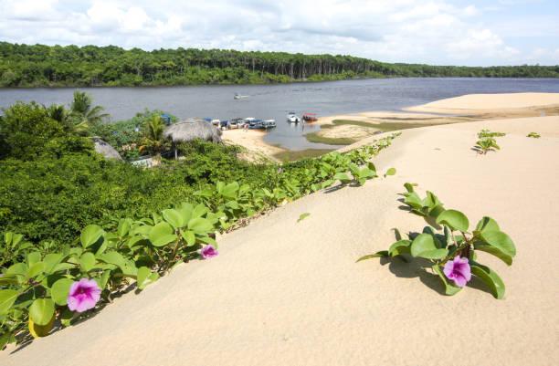 Lençois Maranhenses 5, Maranhão, Brazil. stock photo