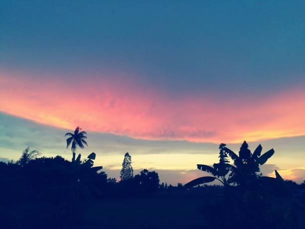 linsenförmige wolke im sonnenuntergang. - lenticular stock-fotos und bilder