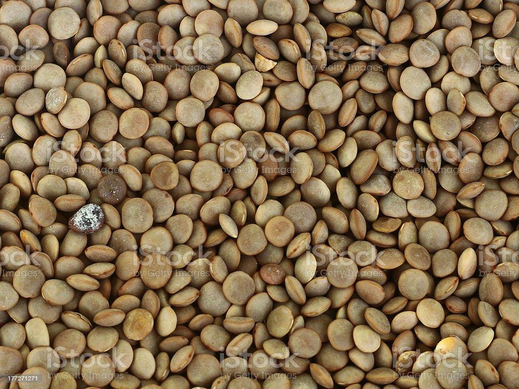 Lentil Background stock photo