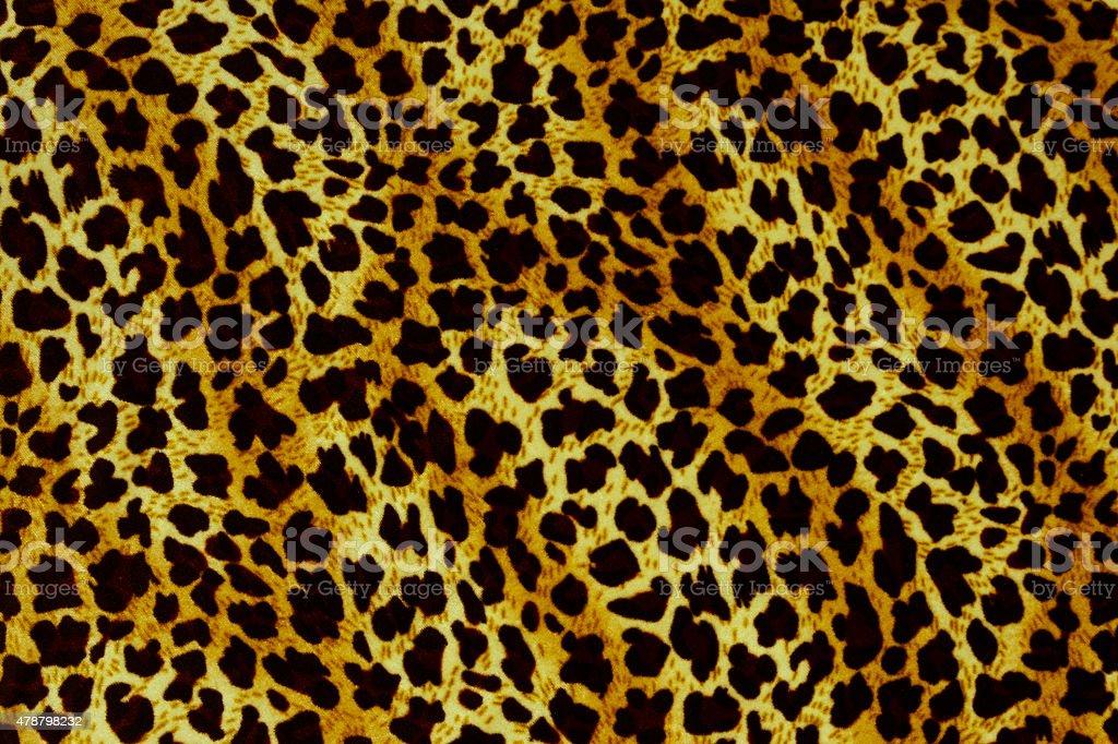 Leopard background stock photo