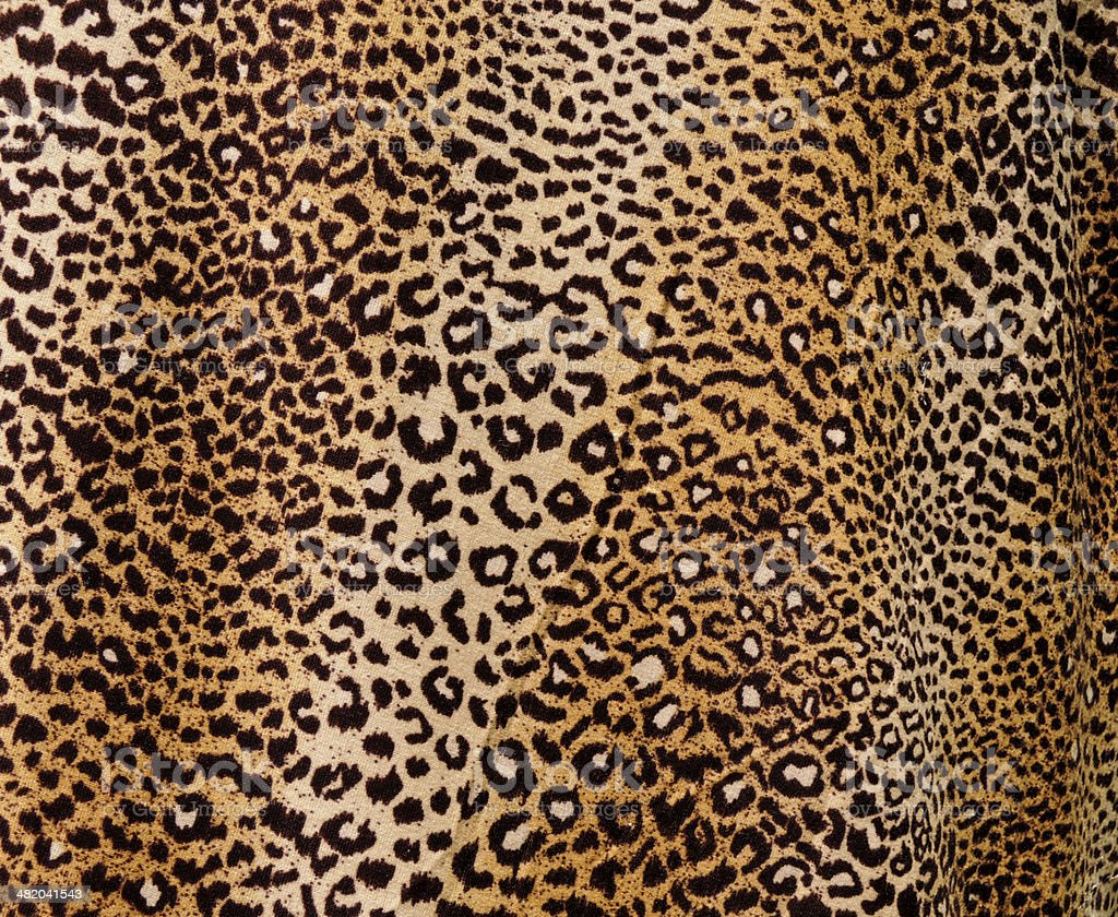 Fondo de leopardo - foto de stock