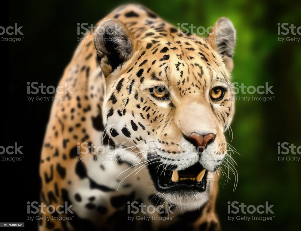 Leopard Digital painting with tablet - foto de stock