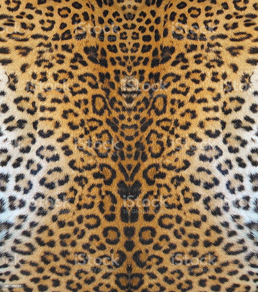 Leopard Leather Leopard Leather Abstract Stock Photo