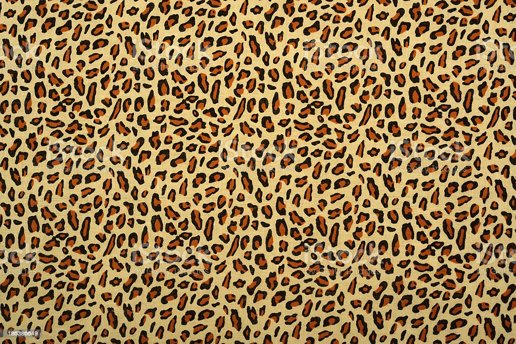 Leopard Pattern Background stock photo