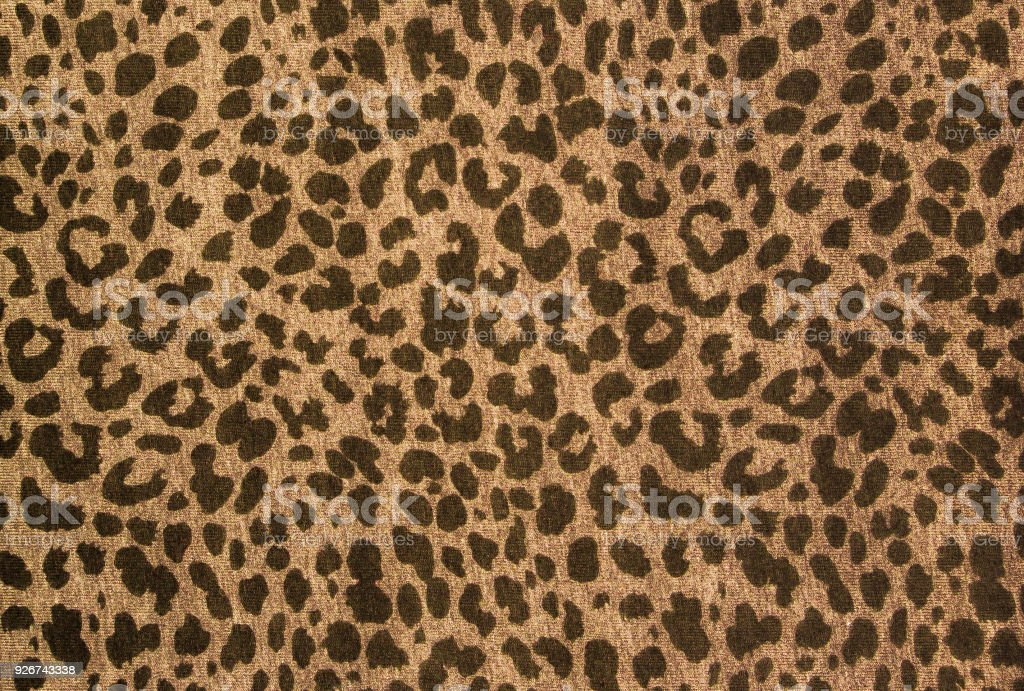 Leopard pattern, fabric texture, background sample stock photo