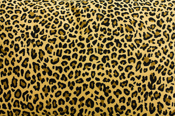 leopard pattern - tiger fur stock photos and pictures