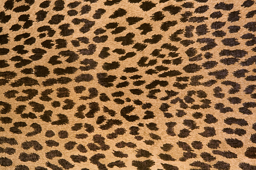 Leopard Patterned Fabric Pattern Stock Photo - Download Image Now