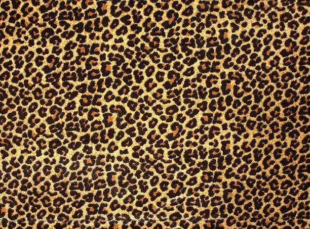 leopard print 2 - animal markings stock photos and pictures