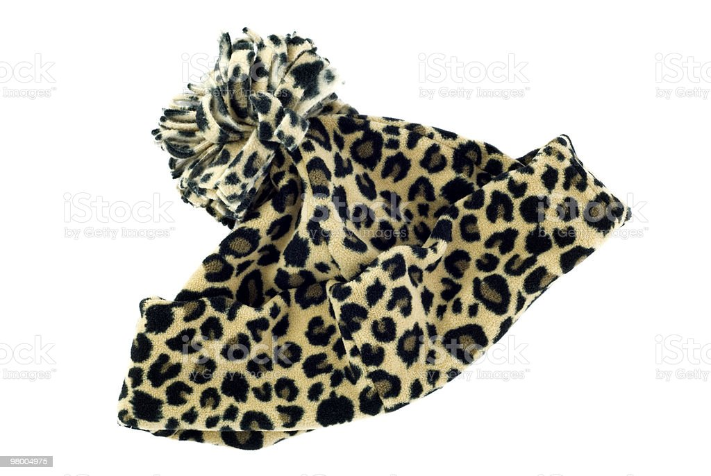 Leopard Print Winter Hat royalty-free stock photo