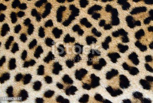 Leopard Skin - pattern close-up photo - genuine leopard hide / fur for print