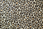 Leopard Skin TexturePlease see some similar pictures from my portfolio: