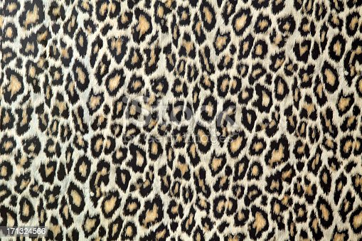 istock Leopard skin texture or fabric 171324566
