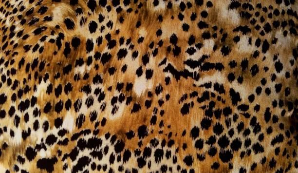 Leopard Spots Background stock photo