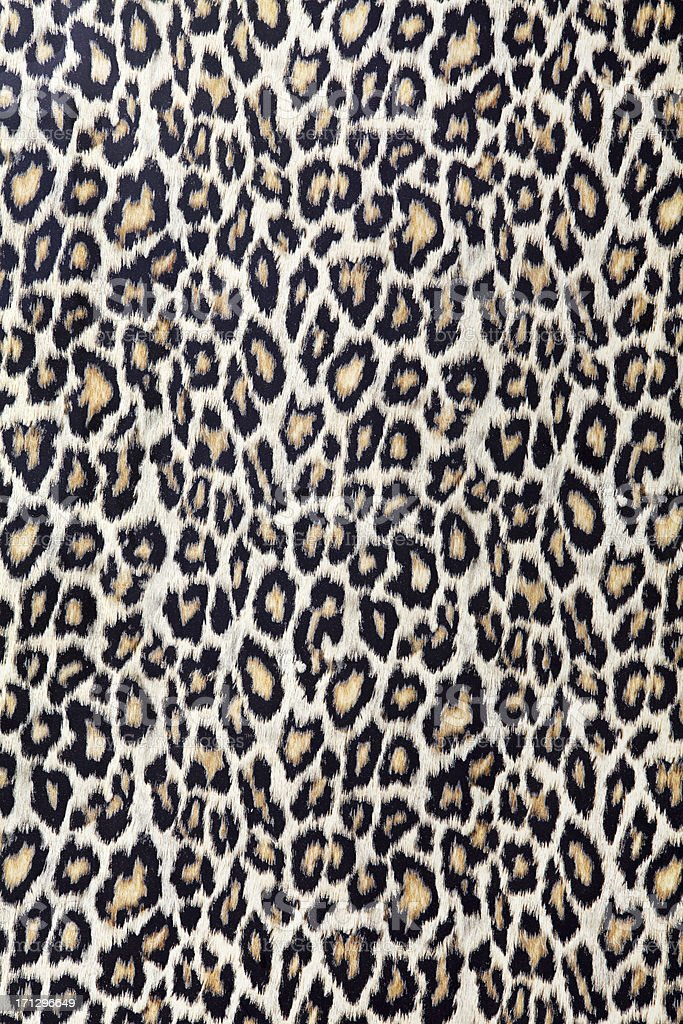 Leopard Texture (Click for more) stock photo