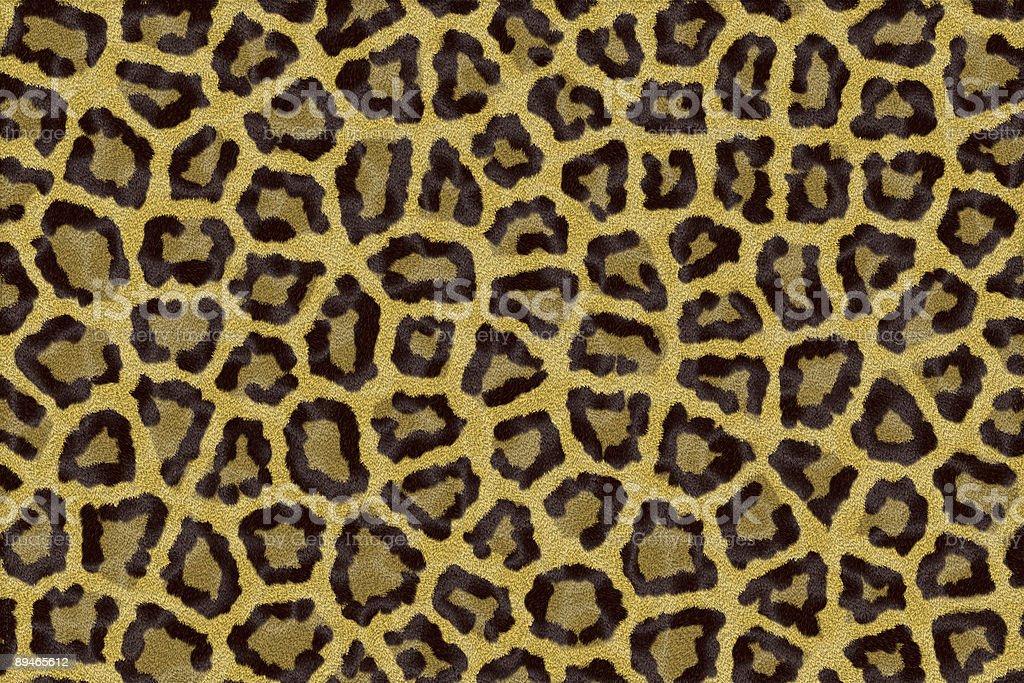 leopard texture stock photo