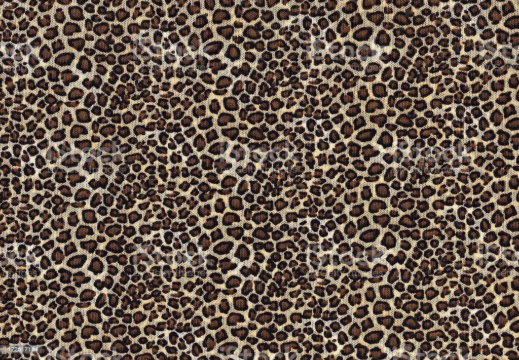 Leopard tulle pattern  XXL background stock photo