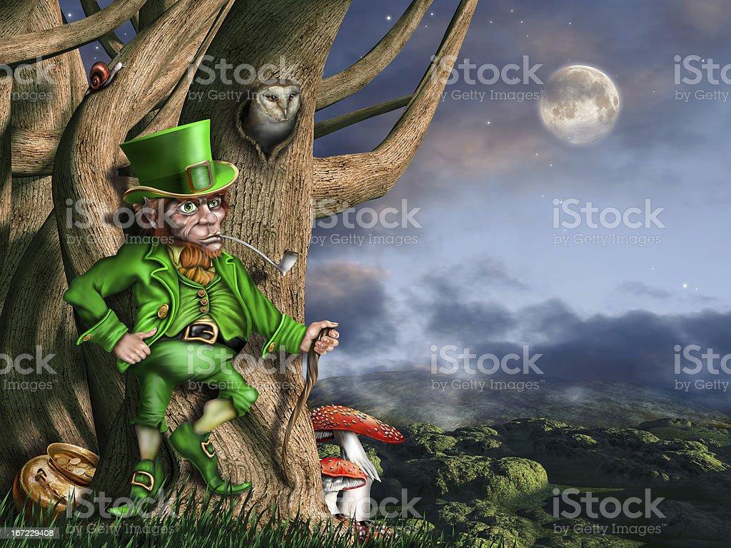 Leprechaun at night stock photo