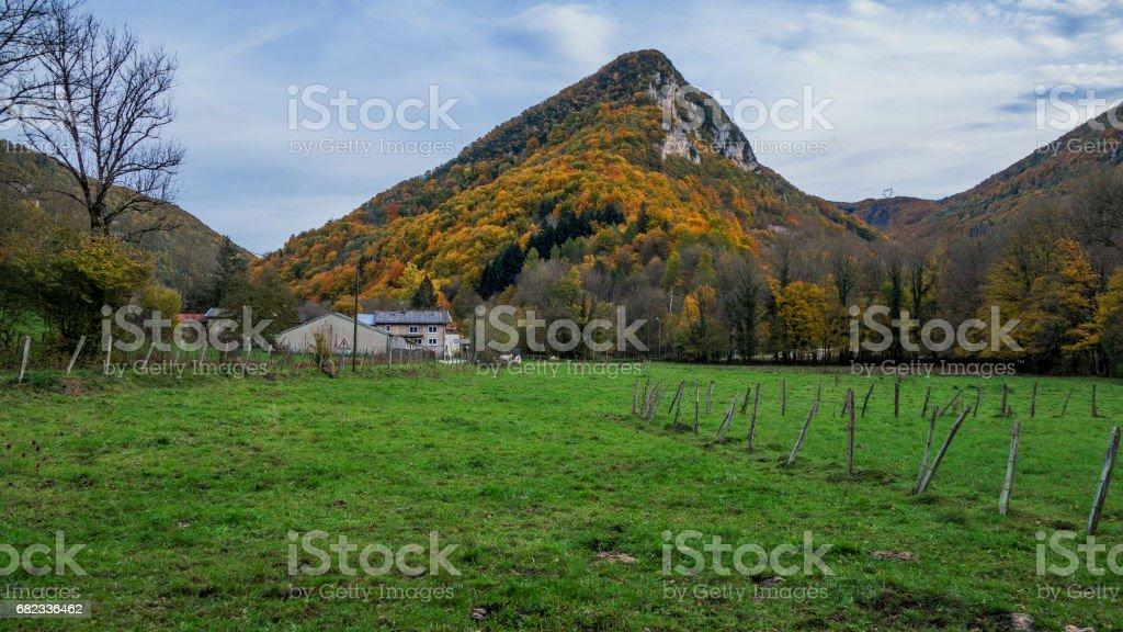 Les couleurs de l'automne dans le Bugey. royalty free stockfoto
