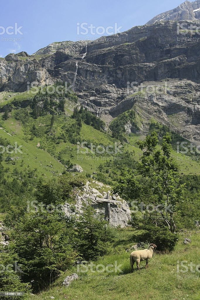 Les Diablerets Area, Swiss royalty-free stock photo