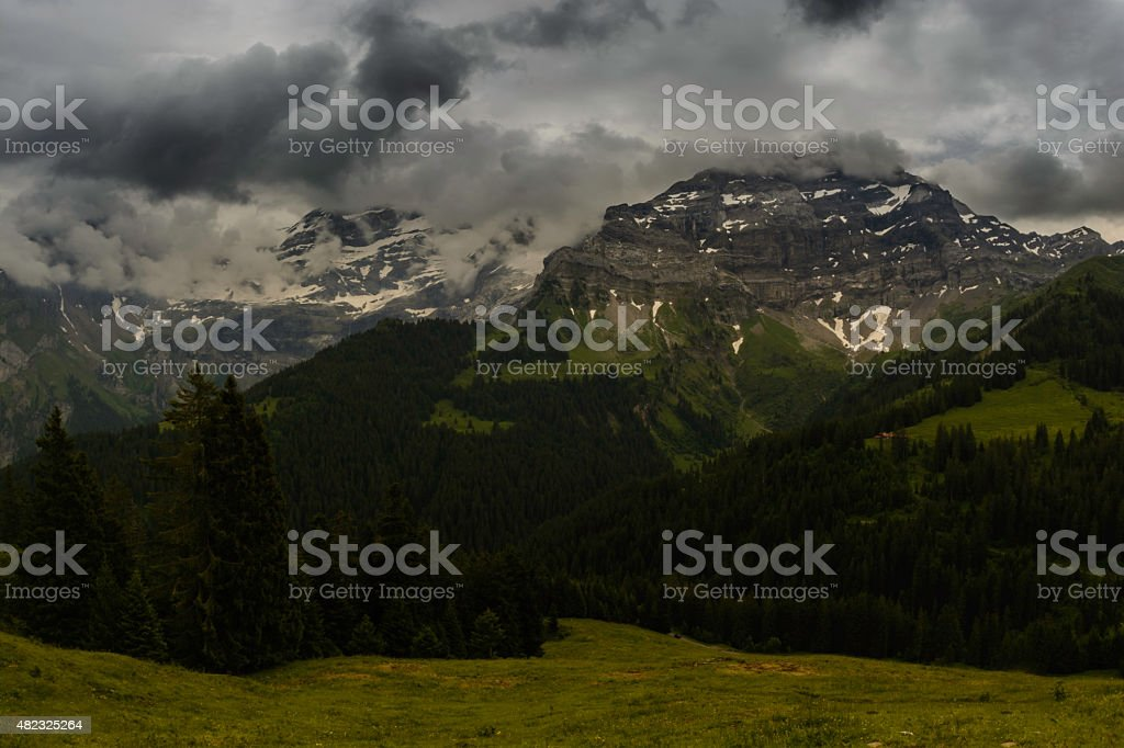 Les Diablerets mountain peak alpine meadow stock photo