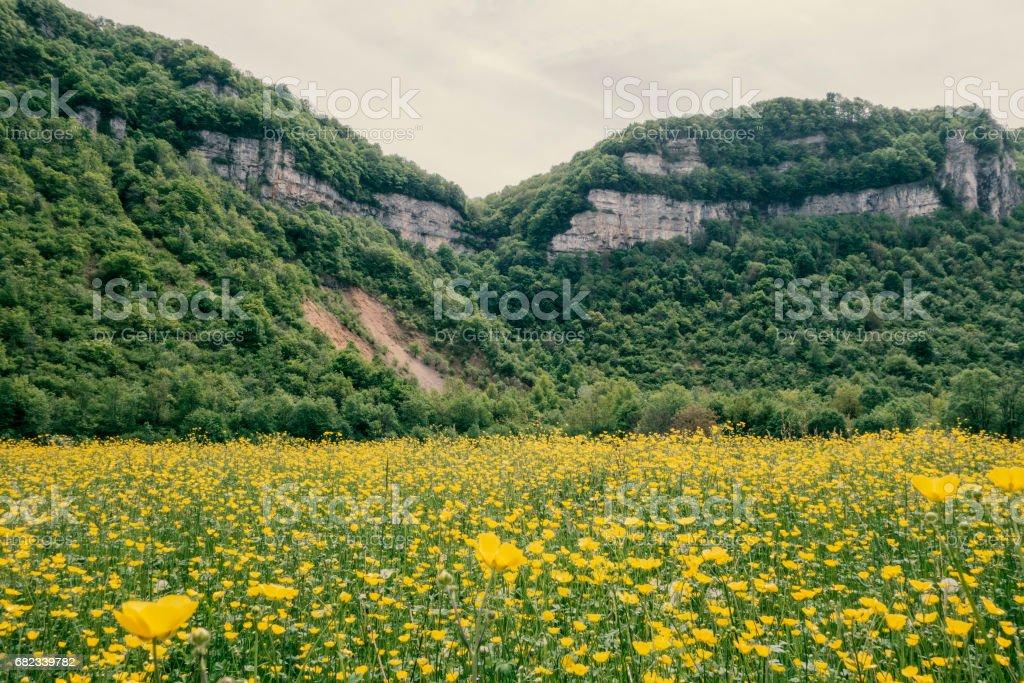 Les falaises du Bugey. foto stock royalty-free