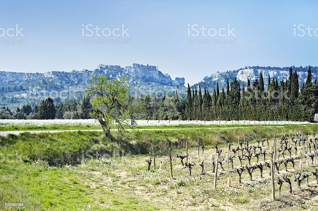 Les-Baux-de-Provence Citadel and landscape royalty-free stock photo