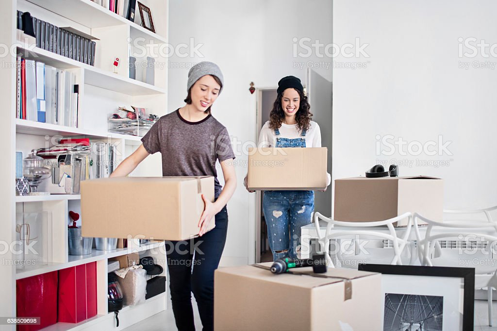 Lesbian couple carrying cardboard boxes in apartment stock photo