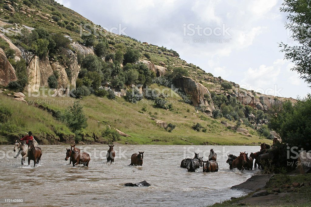Lesotho, ride a horse stock photo