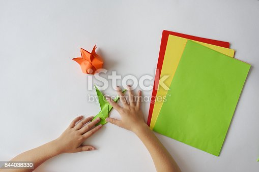 istock lesson of origami 844038330