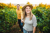 Woman Guiding Young Man by Holding His Hand Through Ripe Vineyard