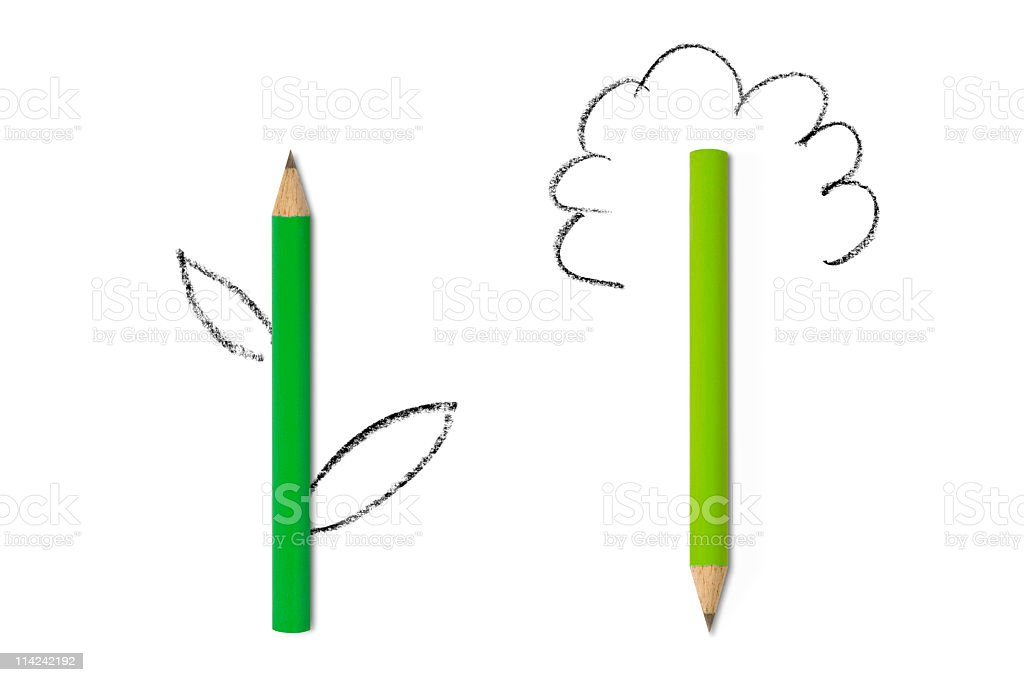 Let your ideas grow stock photo