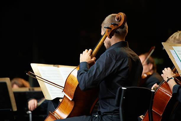 let's get klassische - philharmonie stock-fotos und bilder