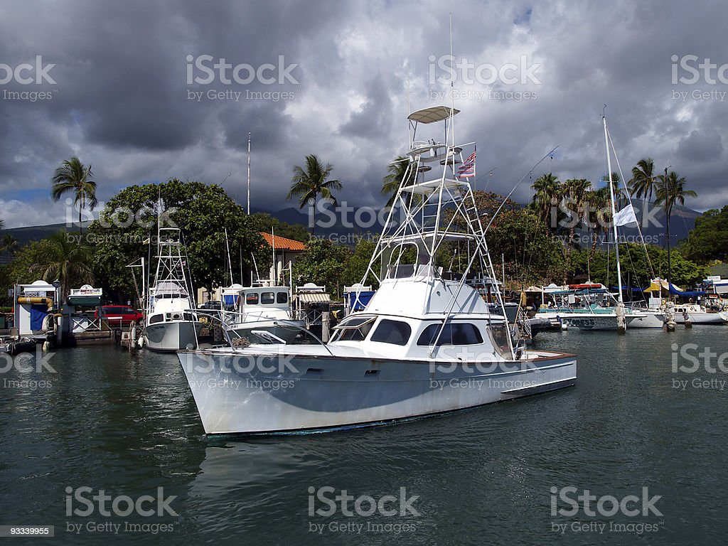 Lets go fishing royalty-free stock photo
