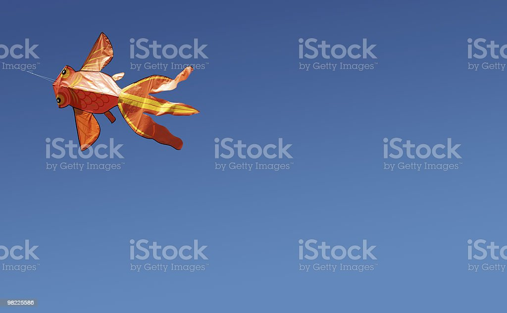 Let's Go Fly a Kite royalty-free stock photo