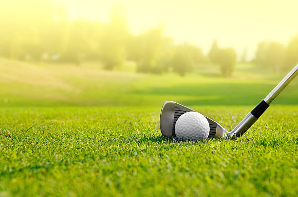 let's golf - golf stock pictures, royalty-free photos & images