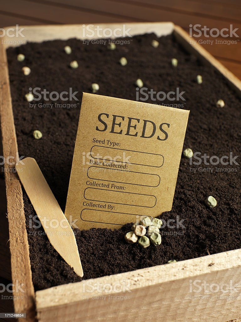 lets grow stock photo