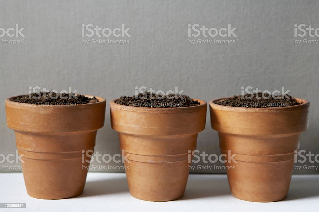 Let's grow something together stock photo
